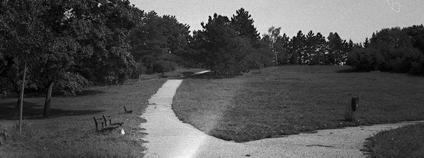 Park Kraví hora v Brně Foto: Jaroslav A. Polák Flickr
