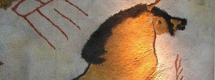 Kresby koní v jeskyni Lascaux Foto: HTO Wikimedia Commons
