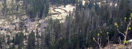Labský důl s meandrujícím tokem Labe Foto: Huhulenik Wikimedia Commons