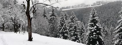 Erzgebirge v zimě Foto: abejorro34 Flickr