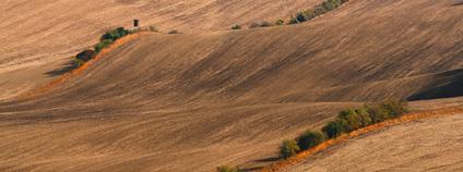 zemědělská krajina Foto: Tyna_Janoch Pixabay