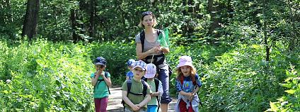 Lesní třída Lesníček při MŠ Semínko v Toulcově dvoře Foto: Asociace lesních mateřských škol