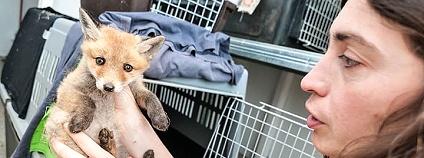 Záchranná stanice hl. m. Prahy pro volně žijící živočichy