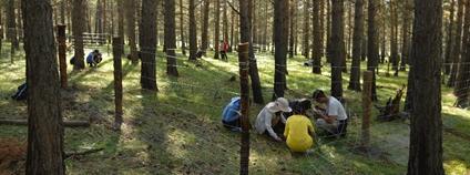 Lesníci MENDELU zahajují mezinárodní projekt v Mongolsku Foto: Mendelova univerzita v Brně