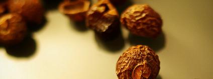 Mýdlové ořechy se kvůli obsahu saponinů používají jako alternativní prací prostředek. Podle výsledků testů ale moc neperou.