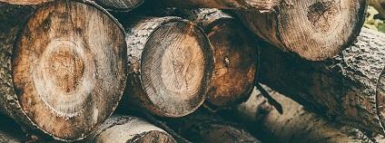 foto:  SAVA86 / pixabay.com