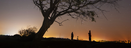 Noční krajina Foto: shahreen / Shutterstock