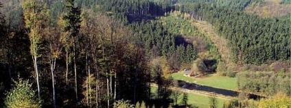 Obora Jelenice se nachází na Opavsku mezi městy Hradec nad Moravicí a Vítkov. Její polohu zvýrazňuje malebné údolí řeky Moravice, na jejímž pravém břehu se obora rozkládá. Historie Obory Jelenice sahá až k roku 1805. Hlavními druhy zvěře chované v oboře jsou daněk skvrnitý, muflon, jelen Sika východní Dybowského, prase divoké a jelen lesní. Při lovu je každému loveckému hostu přidělen lovecký doprovod.