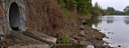 Vyústění odpadních vod do rybníka v Hostivicích.