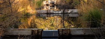 Foto:  Nadace Ivana Dejmala pro ochranu přírody