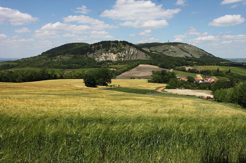 Otakar Pražák: Proč je biosférická rezervace Dolní Morava trnem v oku?