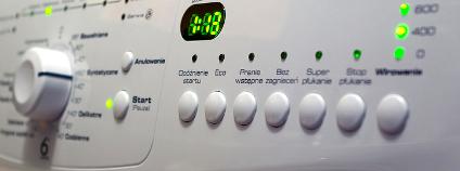 Programy praček nejsou pro srandu králíkům! Foto: r4n / Flickr.com