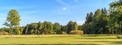 Park Mošnice u Kladrub na Labem Foto: Petr1888 Wikimedia Commons