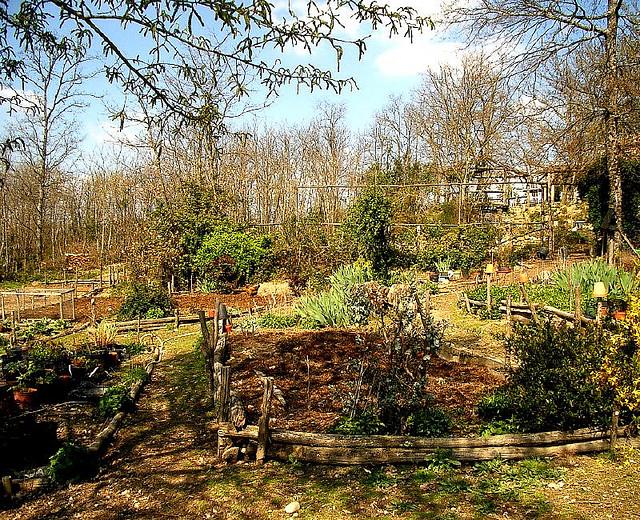 Přírodní zahrada není nikdy hotová. Roste, proměňuje se, vyvíjí se v čase - během ročních období i let