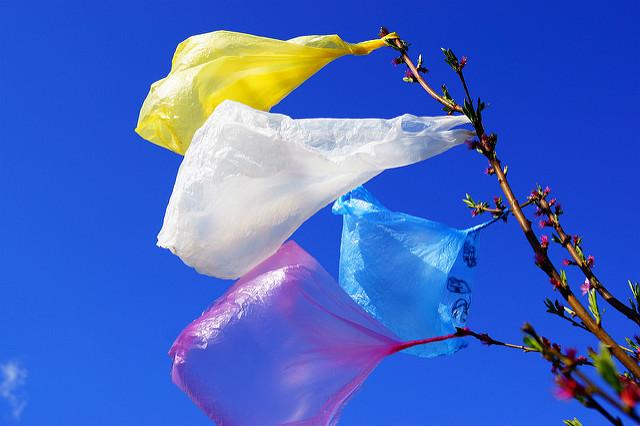Východoafrický stát se tak připojí k více než 60 zemím, které zakázaly nebo omezily používání plastových tašek.#source%3Dgooglier%2Ecom#https%3A%2F%2Fgooglier%2Ecom%2Fpage%2F2019_04_14%2F319365
