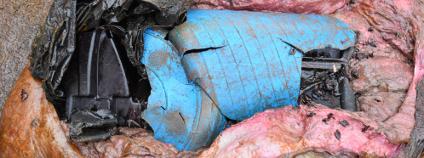 Plasty v žaludku uhynulého vorvaně Foto: Institut für Terrestrische und Aquatische Wildtierforschung