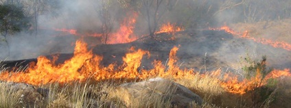 Požár australské buše Foto: StephenMitchell Flickr.com