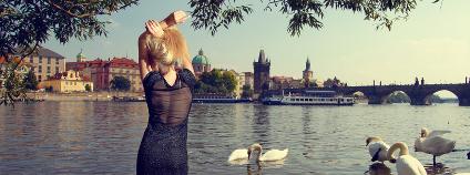 Léto u Vltavy Foto: Skreidzleu / Shutterstock