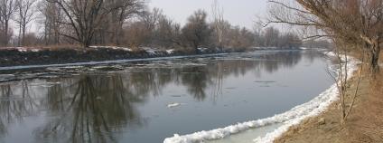 Řeka Morava Foto: Albert Russ Shutterstock.com
