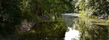 slepé rameno Labe v Pardubicích Foto: Pardubice