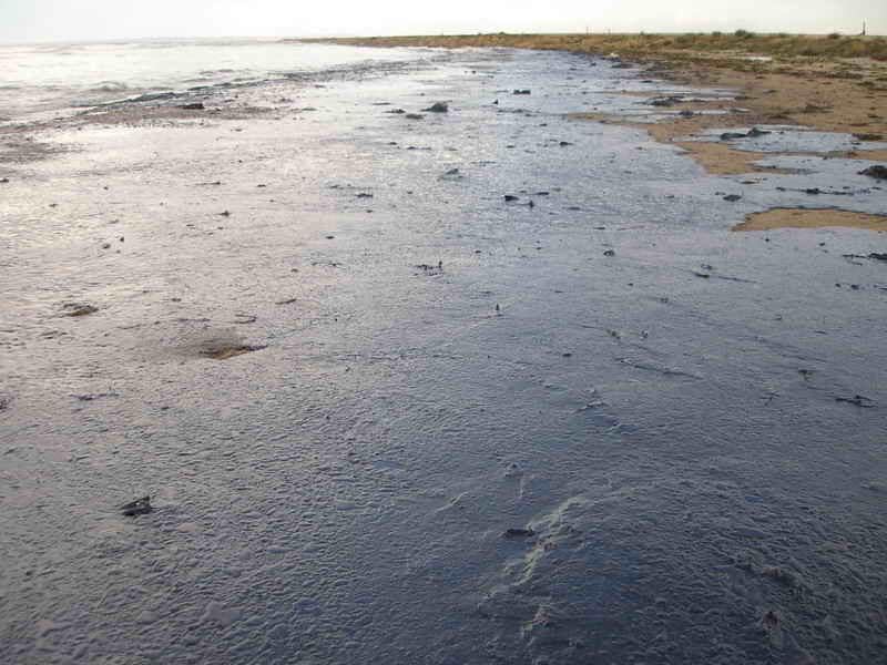 Izraelci marně pátrají po původci rozsáhlého znečištění břehů