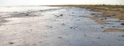 Ropou znečištěná pláž Foto: Igor GOLUBENKOV Flickr