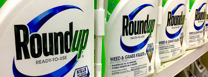 Roundup Foto: Mike Mozart / Flickr.com