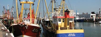 Rybářské lodě v Belgii Foto: Morgaine Flickr.com