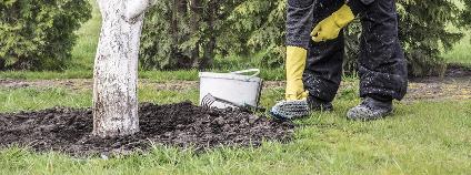 Práce na zahradě Foto: berna namoglu / Shutterstock