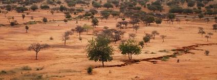Sahel, Burkina Faso Foto: CIFOR Flickr.com