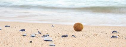 Pláž na Sardinii Foto: nina_gaisch Flickr