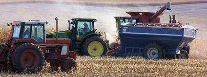 Sklizeň kukuřice [0] Brad Covington Flickr.com