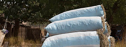 Pytle slámy v Senegalu Foto: Carsten ten Brink Flickr