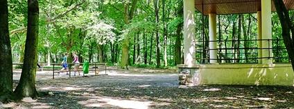Lesopark Háje ve Slaném Foto: Lubor Ferenc Wikimedia Commons