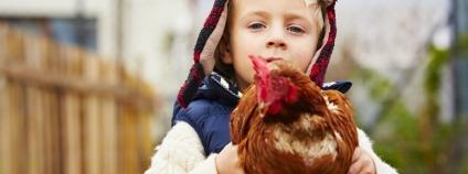 Chlapec se slepicí Foto: Jaromir Chalabala Shutterstock