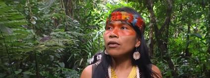 Ekvádorská aktivistka Nemonte Nenquimo Foto: Goldman Environmental Prize / Facebook