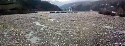 Nádrž plná odpadků na srbské řece Lim Foto: NOVA S / youtube.com
