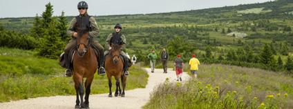 V letních měsících strážci využívají ke strážní službě i koně Foto: Kamila Antošová Správa KRNAP