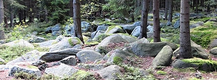 Štamberk kamenné moře Foto: Kraj Vysočina