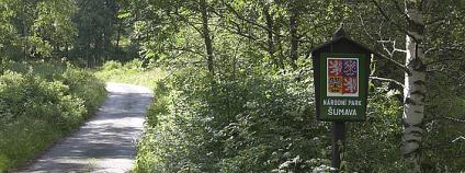Národní park Šumava Foto: Tor Lillqvist / Flickr.com