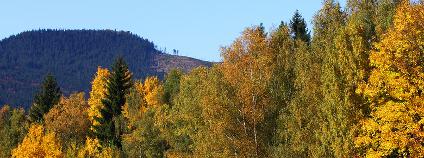 Podzimní Šumava Foto: Kletr Shutterstock