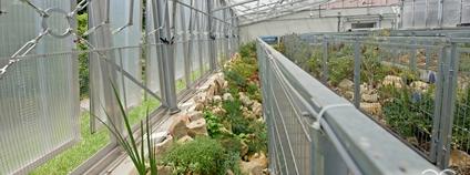 Nový skalničkový skleník v Botanické zahradě v Teplicích Foto: Botanická zahrada Teplice / Facebook