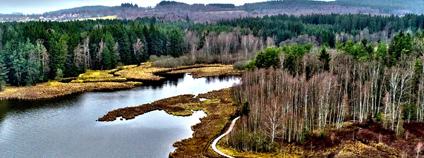 Naučná stezka Olšina Foto: Vojenské lesy a statky