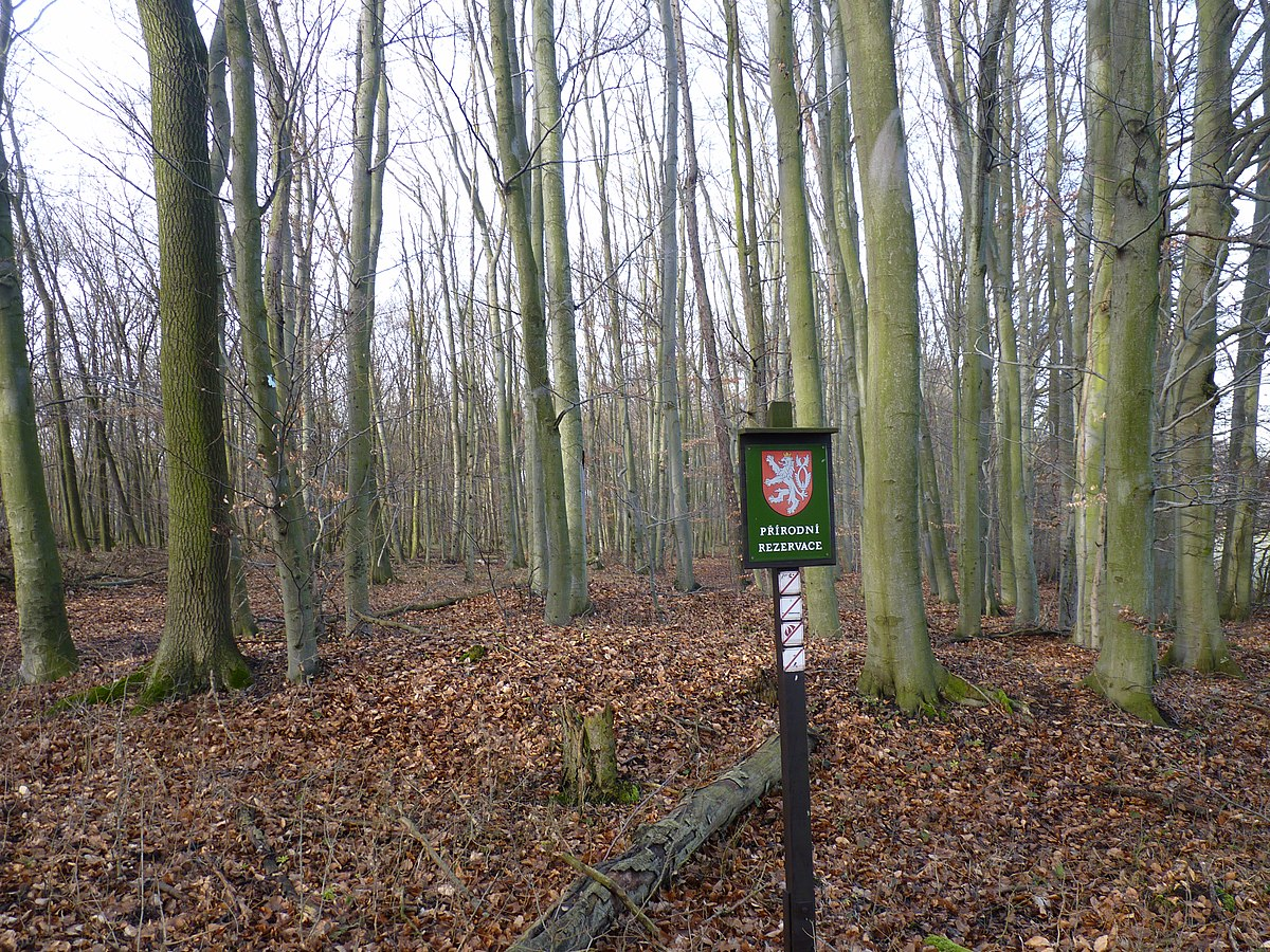 Strážci přírody v Moravském krasu uložili loni třikrát více pokut