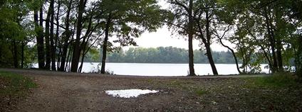Podleský rybník, Praha-Uhříněves Foto: ŠJů Wikimedia Commons