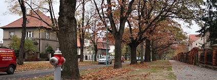 Plzeň Schwarzova ulice