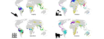 Foto: Nature Ecology and Evolution