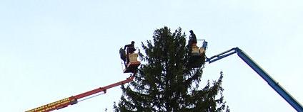 Instalace vánočního stromu na Staroměstském náměstí v Praze Foto: Aktron Wikimedia Commons