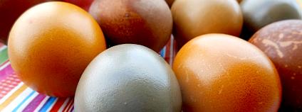 Přírodní barevní velikonočních vajíček. Foto: Hugo Charvát/Ekolist.cz