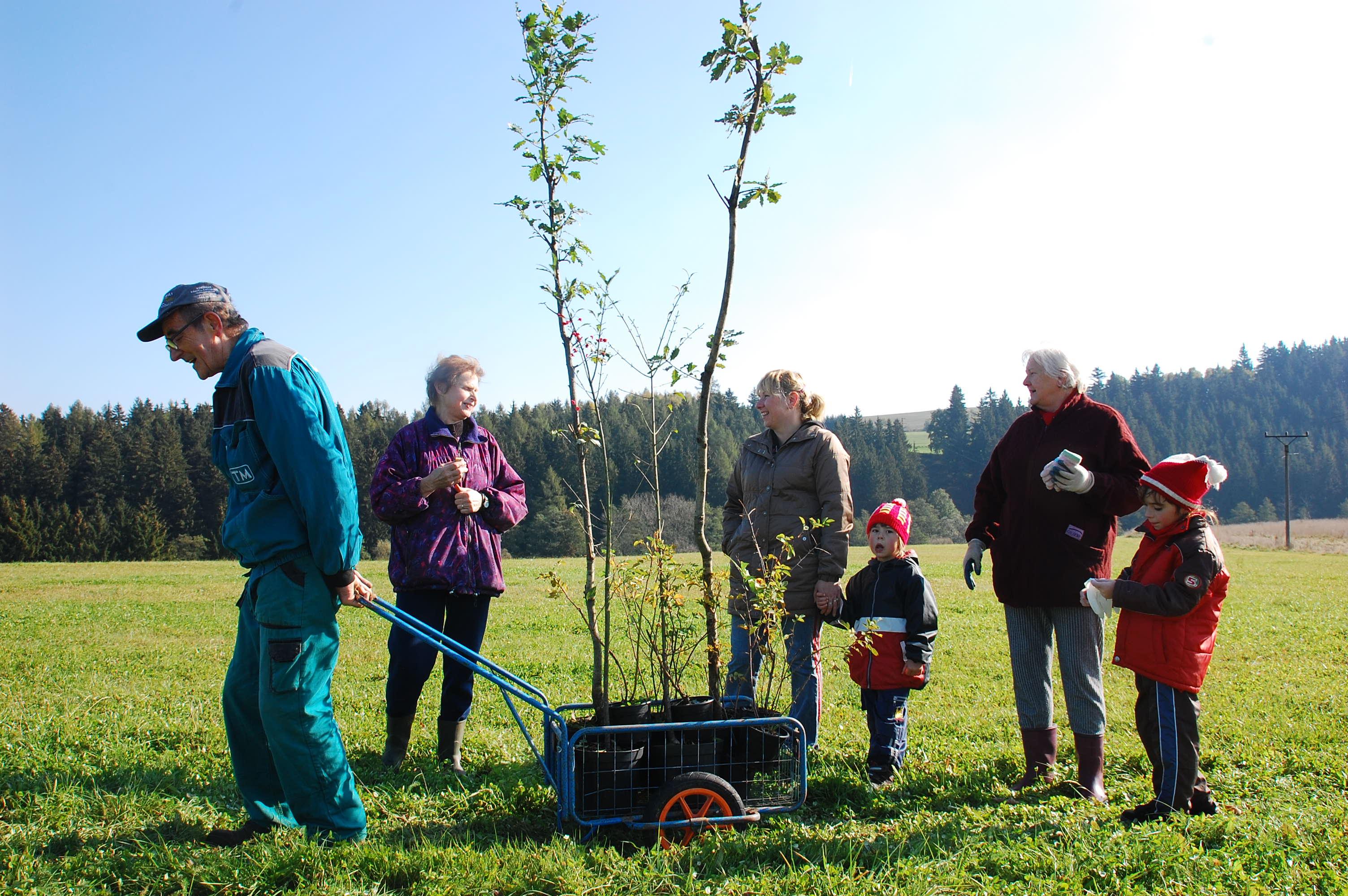 Sázení stromů v projektu Sázíme budoucnost bude podpořeno rekordní částkou